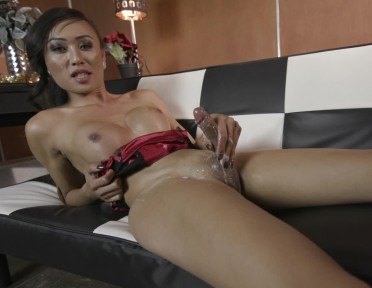A Special Greeting From Venus Lux